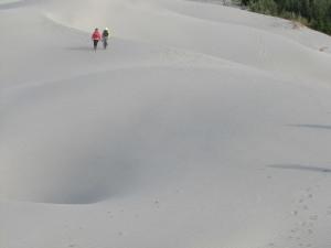 Sand Dunes Alsek